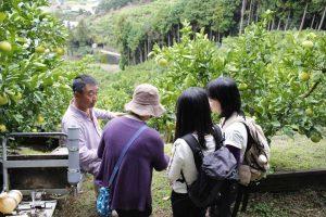 台湾の文旦農家ファミリー2