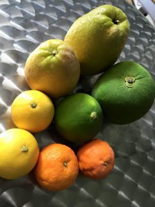 2015:726不細工果物